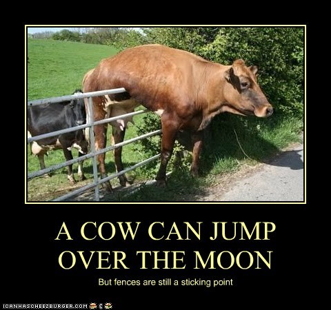cow fences jump nursery rhymes over the moon rhyme sticking point stuck - 6065391872