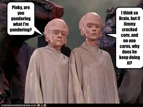 90s brain cartoons corn pinky and the brain pondering Star Trek the cage - 6065399296