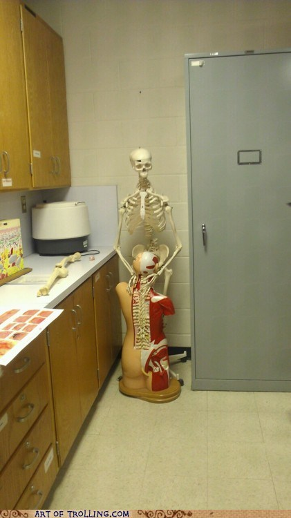 biology,IRL,skeleton,that looks naughty