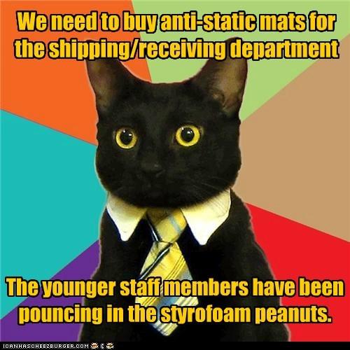 Business Cat - 6065835008