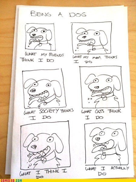 animals dogs pets the internets what people think i do - 6065849600