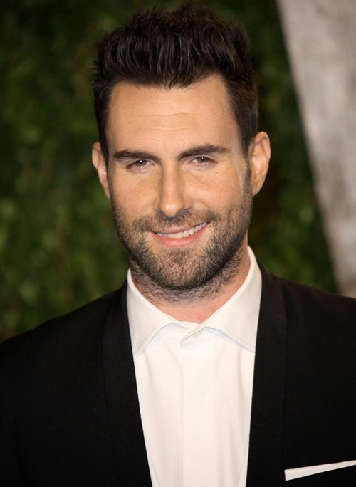 adam levine,american horror story,maroon 5,ryan murphy,Ryan Seacrest,the voice,TV