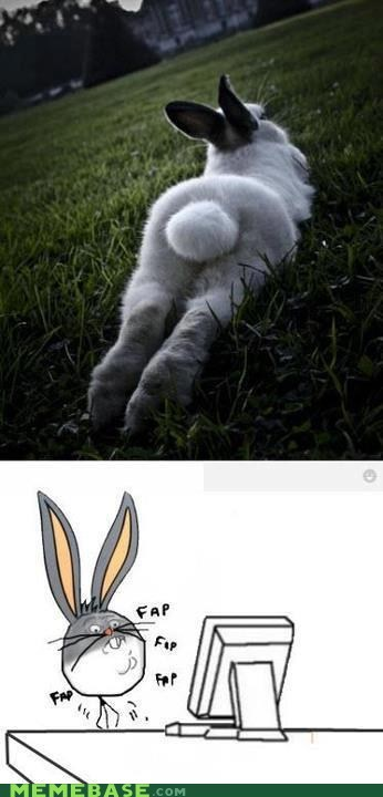 bugs,fap,hare,rabbit,Rage Comics,tail cotton