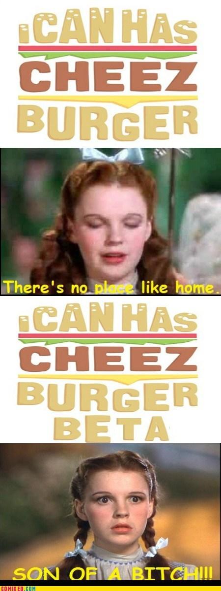 Cheezburger Image 6067037440