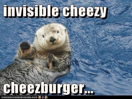 Cheezburger Image 6067216896