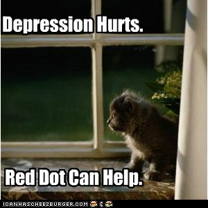 cat,depression,depression hurts,laser,lolcat,play,red dot,Sad