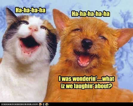 Ha-ha-ha-ha Ha-ha-ha-ha-ha I was wonderin'.....what iz we laughin' about?