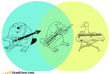 animals classic duck keytar platypus prince venn diagram - 6069606144