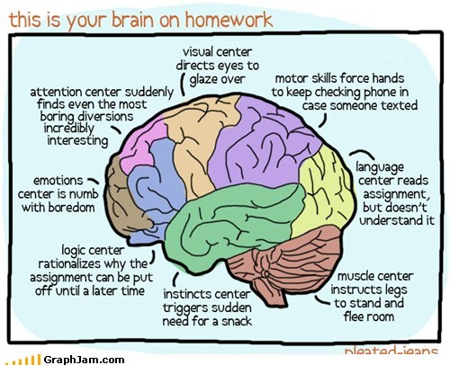 best of week brain homework school - 6069631488