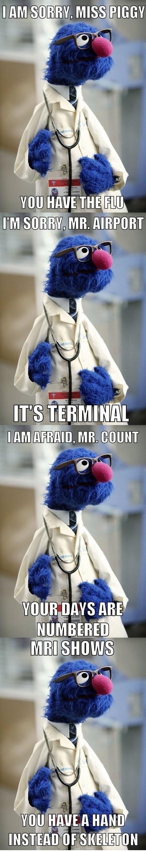 doctor grover Sesame Street puns - 6069723648