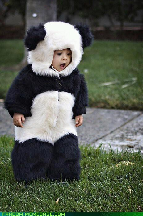 cosplay cute kids panda - 6069741824
