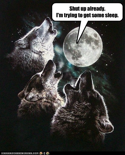 annoyed,howling,shut up,sleep,three wolf moon,trying,wolf shirt,wolves
