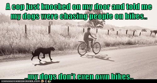A cop just knocked on my door and told me my dogs were chasing people on bikes.. ..my dogs don't even own bikes..