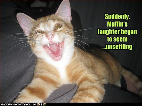 cat Cats classic classics crazy creepy insane laugh - 6070542080