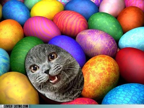 Join Our Easter Egg Hunt!