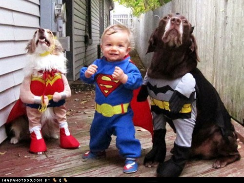 baby best of the week costume dogs Hall of Fame super heroes - 6070882048