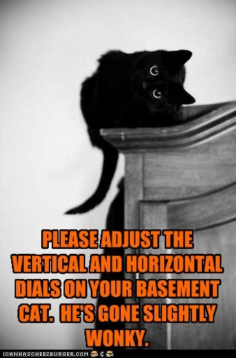 PLEASE ADJUST THE VERTICAL AND HORIZONTAL DIALS ON YOUR BASEMENT CAT. HE'S GONE SLIGHTLY WONKY.
