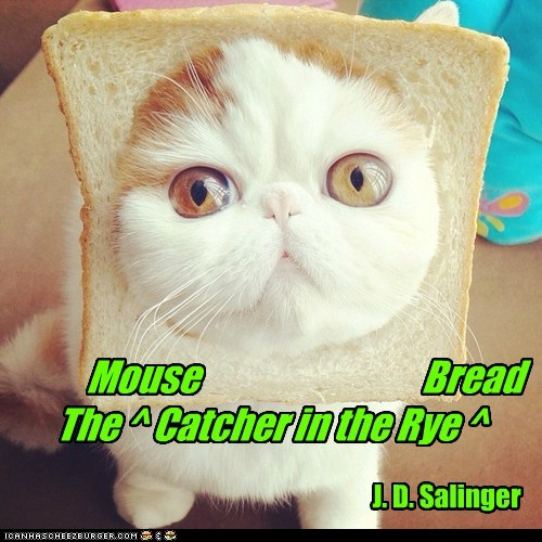 Cheezburger Image 6070928896