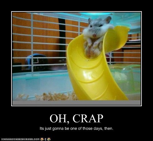 bad day best of the week crap fat Hall of Fame hamster One Of Those Days slide stuck