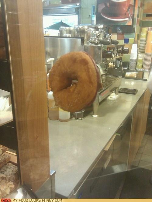 doughnut,float,hover,magic