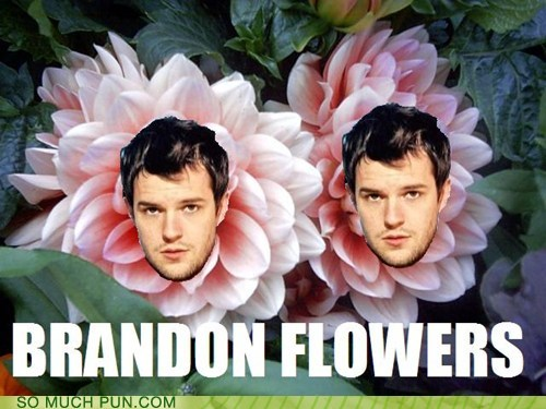 Brandon Flowers,frontman,Hall of Fame,lead singer,literalism,longform,Songs,surname,the killers
