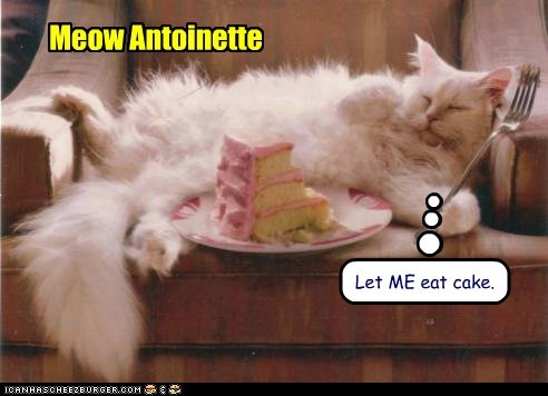 cake cat food french lolcat nom - 6072021760