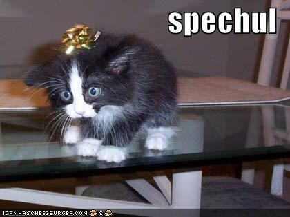 Cheezburger Image 607207680