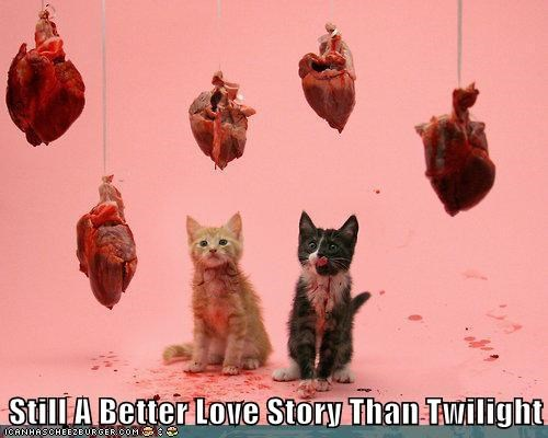 Cats,hearts,still a better love story,twilight,vampires,weird kid