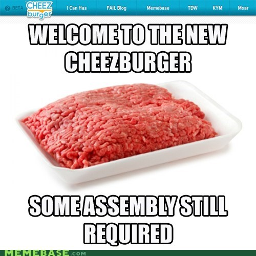 Cheezburger Image 6073059072