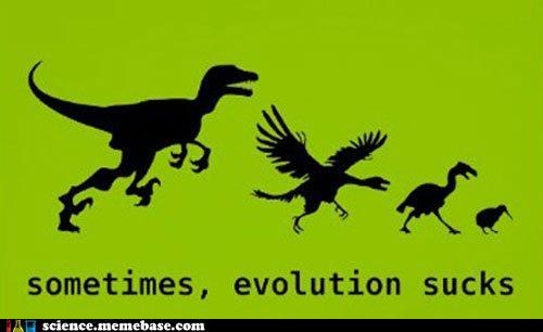 birds dinosaurs evolution Life Sciences Memes - 6073516544
