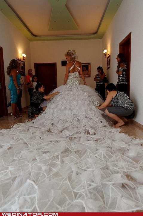 crazy,dress,fabric,funny wedding photos,ridiculous,train