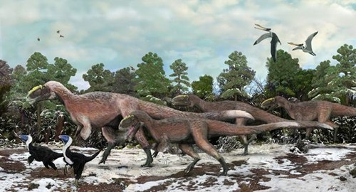 dinosaurs,feathers,fossils,largest feathered dinosau,science,t rex,yutyrannus