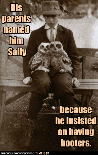 girl,hooters,owls,pair,parents,puns,sally