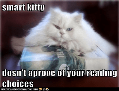 smart kitty  dosn't aprove of your reading choices