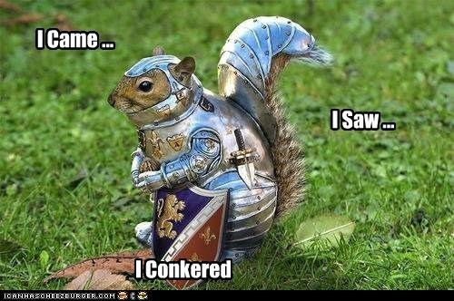 best of the week conquer Hall of Fame knight squirrel squirrels - 6074764544
