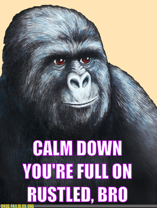 calm down gorilla jimmies meme my jimmies