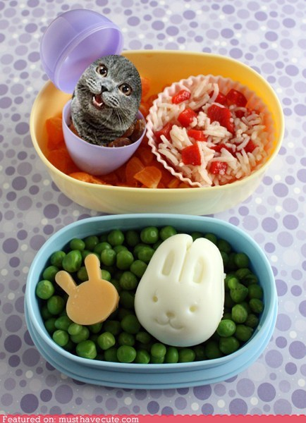 bento,bunny,cheese,easter,eggs,epicute,peas,rice