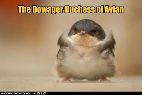 avian bird dowager downton abbey duchess high class