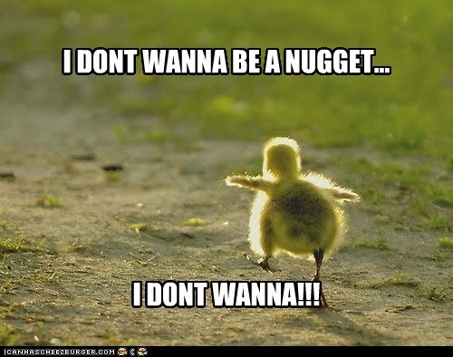 I DONT WANNA BE A NUGGET... I DONT WANNA!!!