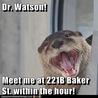 Dr. Watson! Meet me at 221B Baker St. within the hour!