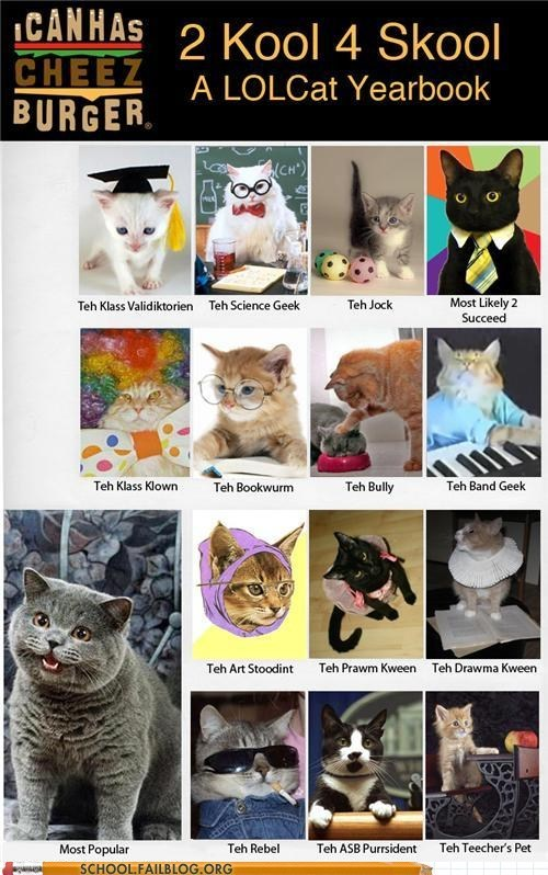 lolcats,school of cheez,yearbooks