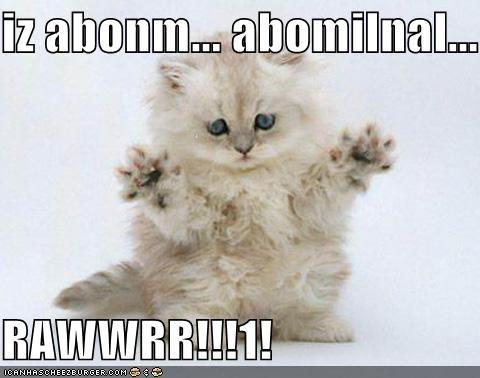 abominable kitten lolcats lolkittehs - 607719680