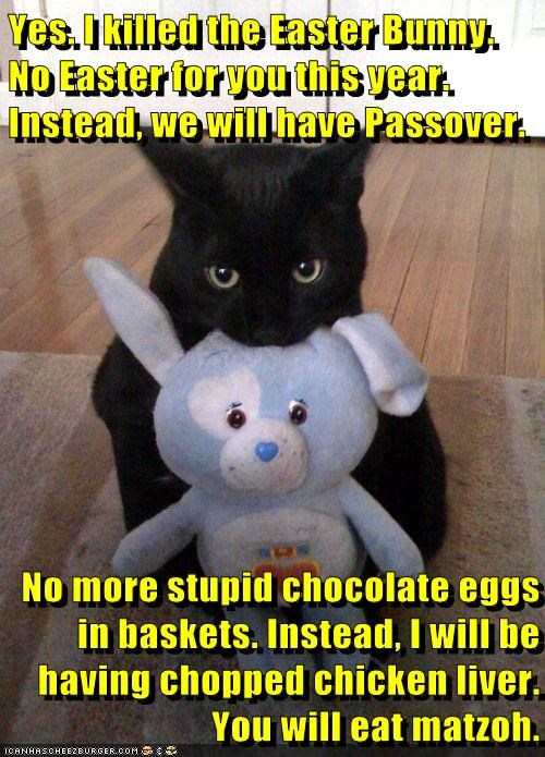 Yes. I killed the Easter Bunny. No Easter for you this year. Instead, we will have Passover. No more stupid chocolate eggs in baskets. Instead, I will be having chopped chicken liver. You will eat matzoh.