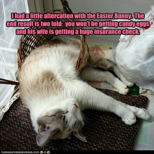 I had a little altercation with the Easter Bunny. The end result is two fold: you won't be getting candy eggs and his wife is getting a huge insurance check.