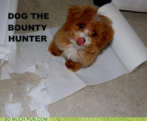 bounty,brand,classic,dogs,dog the bounty hunter,double meaning,hunter,literalism,paper towel