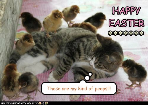 HAPPY EASTER ******* These are my kind of peeps!!!