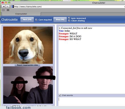animals,chatroulette,trolling,webcam,wtf