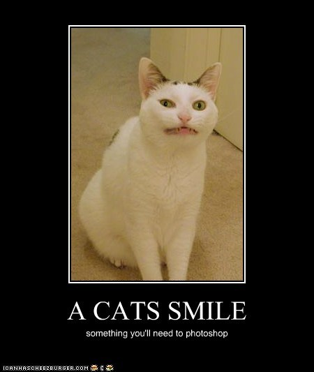 A CATS SMILE something you'll need to photoshop
