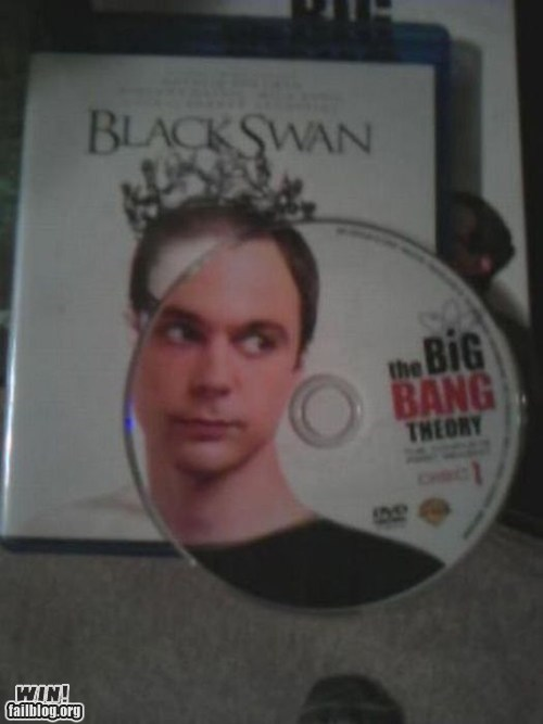 big bang theory black swan clever DVD - 6078471680