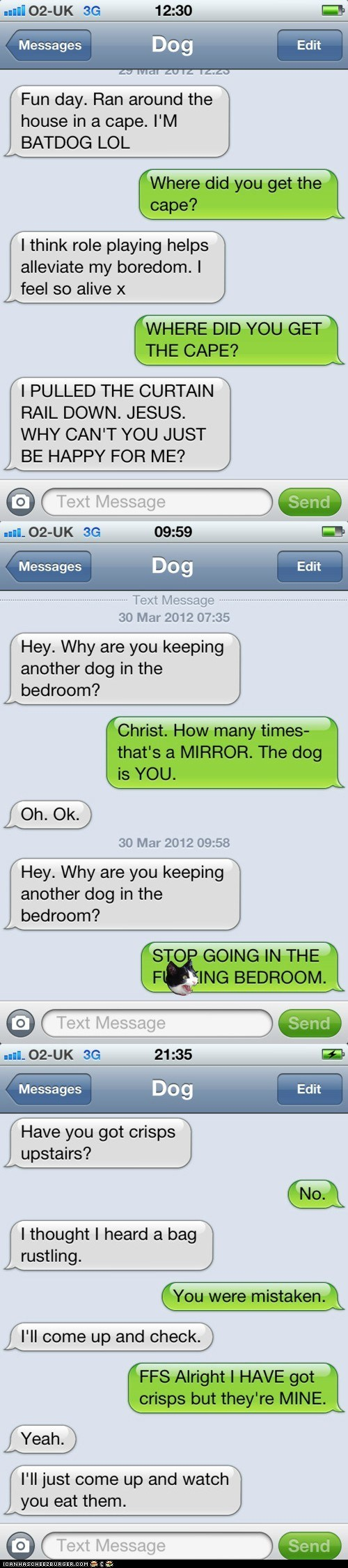 best of the week,dogs,Hall of Fame,iPhones,phones,silly,texting,texts,texts from dog